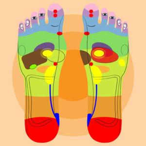 Zeichnung mit den unterschiedlichen Fußreflexzonen